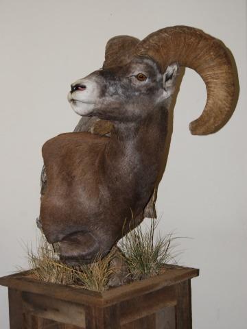 pedestal-mounts-9