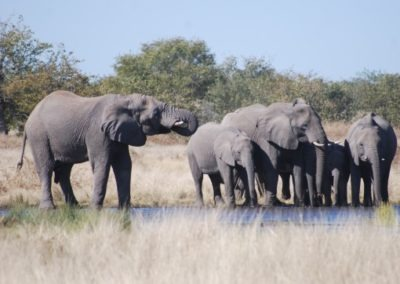 photo-safaris-28